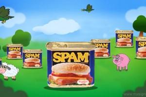 Internet Spam Farm